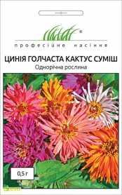 Семена циннии Кактус смесь, 0.5г, Hem, Голландия, Професійне насіння, до 2019 фото