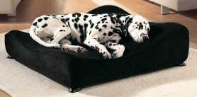 Чехол для ортопедического дивана для собак Sofa Savic, средний, 50х50см фото