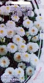 Семена пиретрума девичего, 0.1г, Семена Украины фото