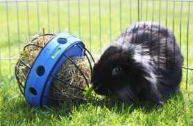 Кормушка для сена и лакомств для грызунов Savic Bunny Toy 19,5Х18Х12см фото