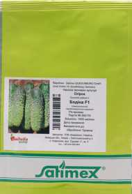 Семена огурца Бодина F1, 1000 шт, Satimex, Германия, Садиба Центр фото