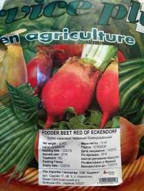Семена свеклы кормовой Еккендорфський красный, 10 кг, GSN, Франция, Садиба Центр фото