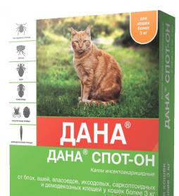 Дана Спот-Он для кошек 1,0 мл 1 шт ПОШТУЧНО фото