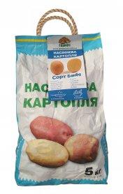 Семенной картофель Банба, 1 репродукция (пакет), 5кг фото