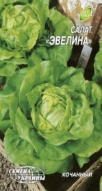 Семена салата кочанного Эвелина, 1г, Семена Украины фото
