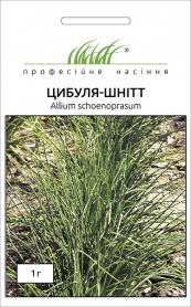 Семена лука-шнитт, 1г, Hem, Голландия, Професійне насіння фото