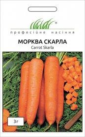 Семена моркови Скарла, 3г, Tezier, Франция, Професійне насіння фото
