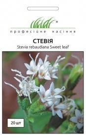Семена стевии, 20шт, Hem, Голландия, Професійне насіння фото