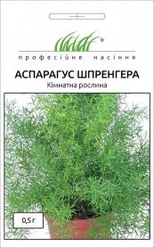Семена аспарагуса Шпренгера, 0.5г, Hem, Голландия, Професійне насіння фото