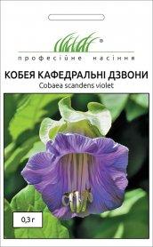 Семена кобеи Кафедральные звоны, 0.3г, Hem, Голландия, Професійне насіння фото