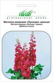 Семена маттиолы Лусинда красная, 0.1г, Hem, Голландия, Професійне насіння фото