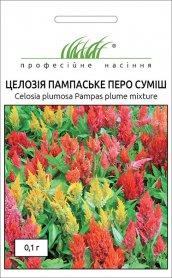 Семена целозии Пампаское перо смесь, 0.1г, Hem, Голландия, Професійне насіння фото
