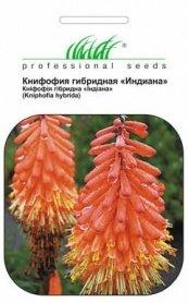 Семена книфофии гибридной Индиана, 0.2г, Hem, Голландия, Професійне насіння фото