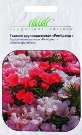 Семена годеции крупноцветковой Рембрандт, 0.1г, Hem, Голландия, Професійне насіння фото
