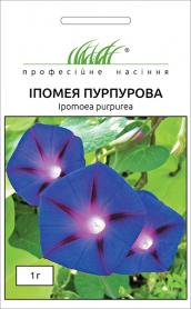 Семена ипомеи пурпурной, 1г, Hem, Голландия, Професійне насіння фото