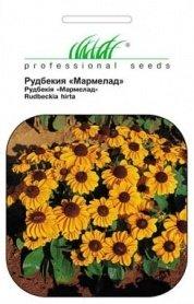 Семена рудбекии Мармелад, 0.2г, Hem, Голландия, Професійне насіння фото