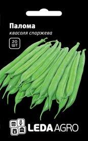 Семена фасоли спаржевой Палома, 20шт, Nunhems, Голландия, семена Леда Агро фото