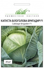 Семена капусты Бригадир, 20шт, Clause, Франция, Професійне насіння фото