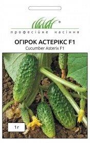 Семена огурца Астерикс F1, 1г, Bejo, Голландия, Професійне насіння фото