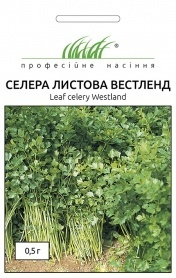 Семена сельдерея листового Вестленд, 0.5г, Hem Zaden, Голландия, Професійне насіння фото