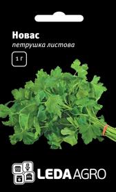 Семена петрушки Новас, 1г, Clause, Франция, семена Леда Агро фото