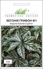 Семена бегонии Грифон, 5шт, Pan American, США, Професійне насіння фото