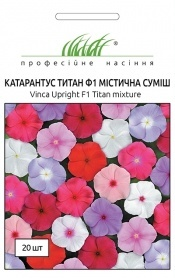 Семена катарантуса Титан мистическая смесь, 20шт, Pan American, США, Професійне насіння фото