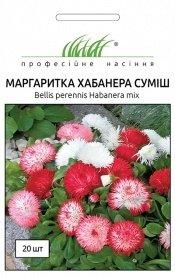 Семена маргаритки Хабанера смесь, 20шт, Benary, Германия, Професійне насіння фото