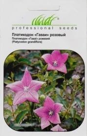 Семена платикодона Гаваи розовый, 0.1г, Hem, Голландия, Професійне насіння фото